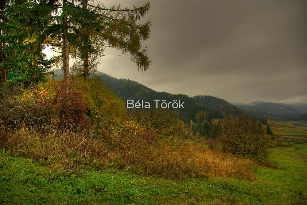 Before Rain by Béla Török
