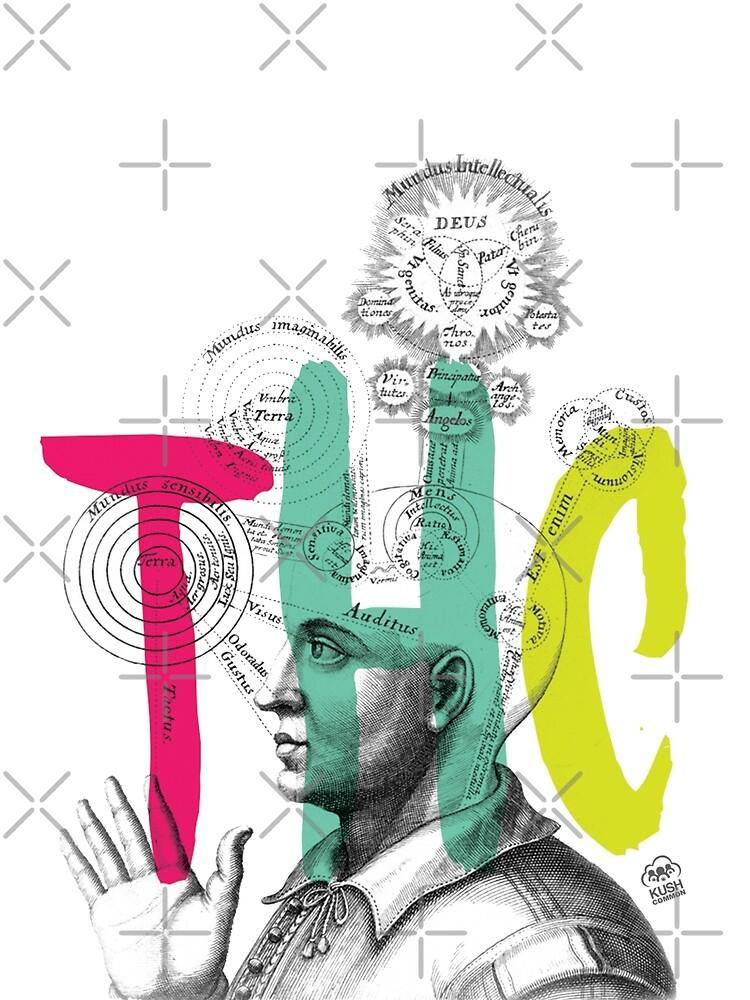 THC Minds by KUSH COMMON