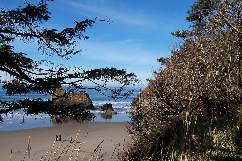Arcadia Beach by pfeifferphotos