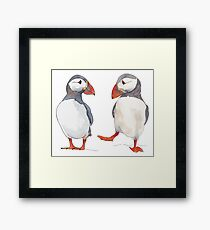 Puffin friends dancing - illustration Framed Print