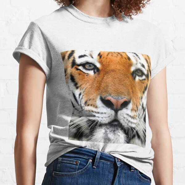 Amur Tiger Three Classic T-Shirt