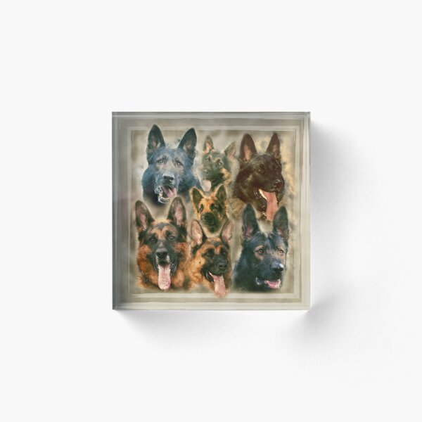 German Shepherd dog - GSD Watercolor collage Acrylic Block