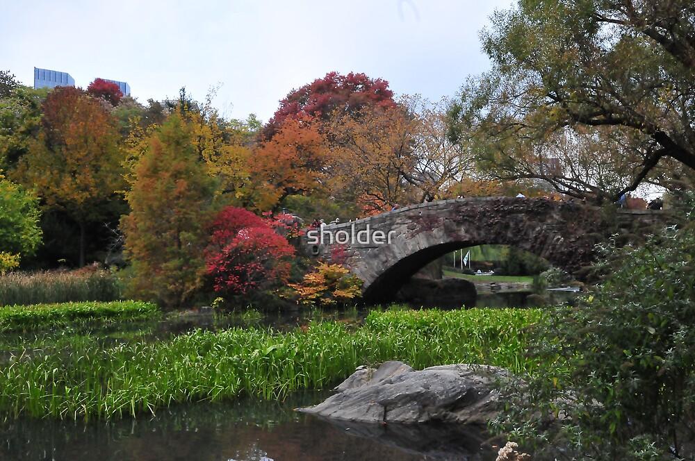 Central Park a Bridge View by sholder