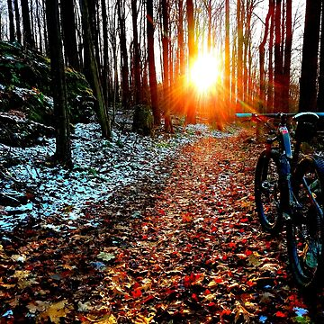 Early Winter Trail by OrneryPenguin
