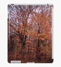 Transitions -  HDR iPad Case/Skin