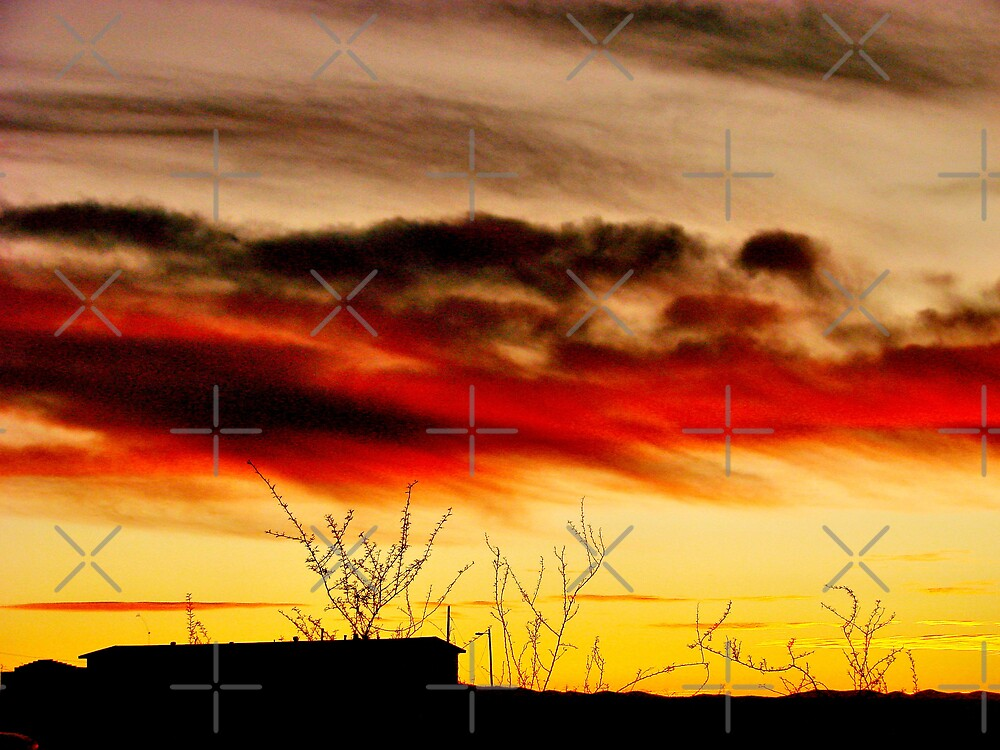 Sunset Silhouette 2 by Kimberly Miller