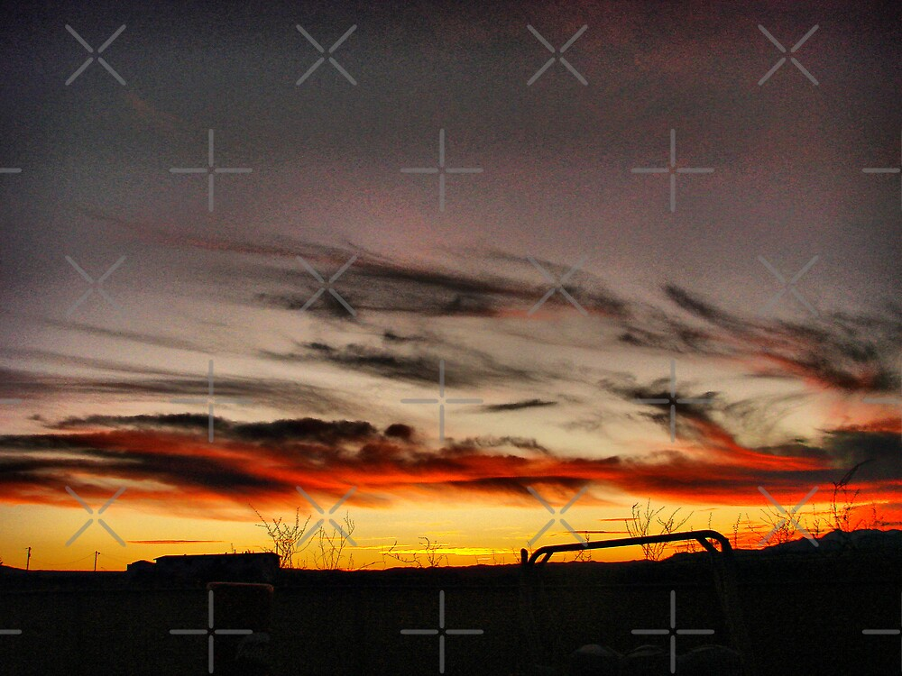 Sunset Silhouette 5 by Kimberly Miller