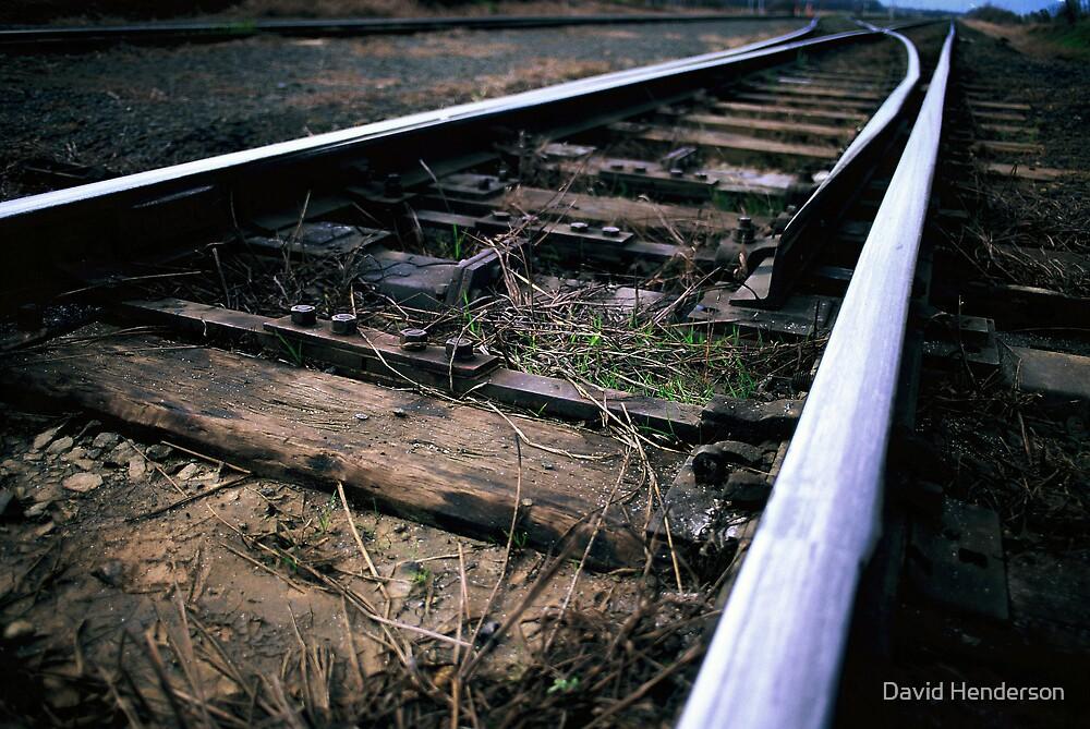The Tracks by David Henderson