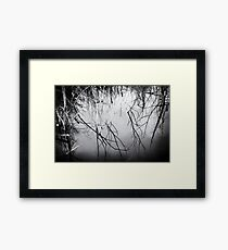 Water Trees Reflection Art Framed Print