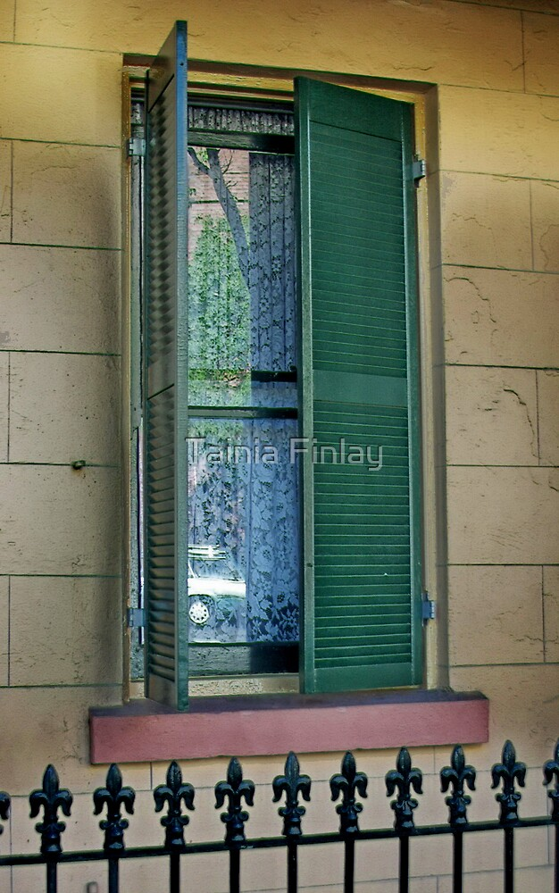 Open Shutters by Tainia Finlay