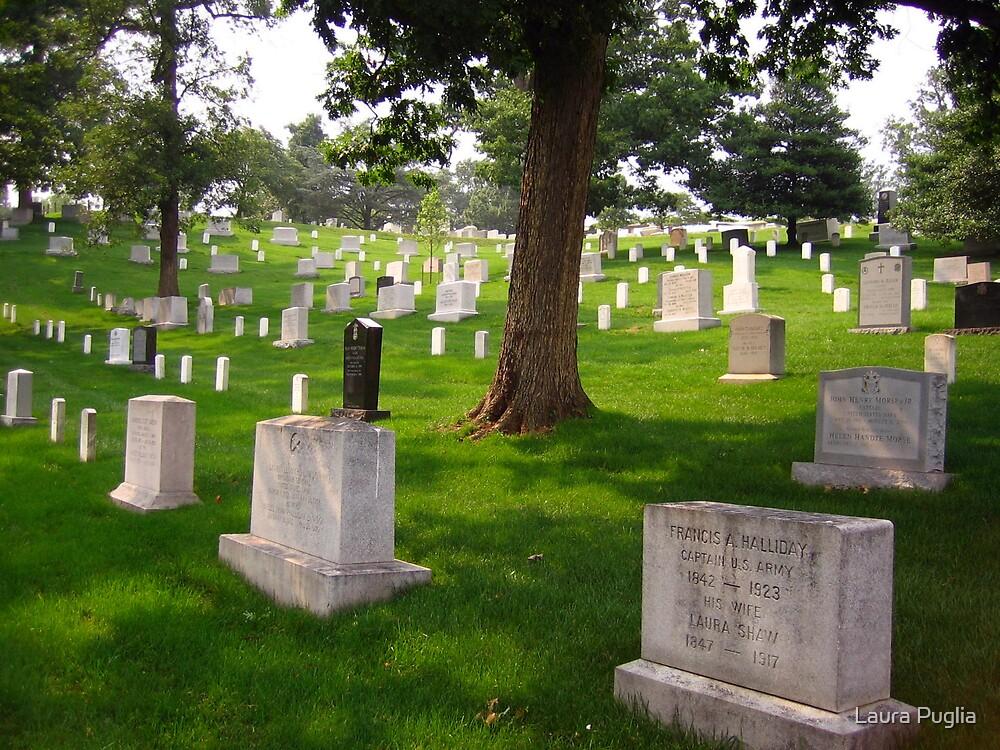 Arlington Cemetery by Laura Puglia