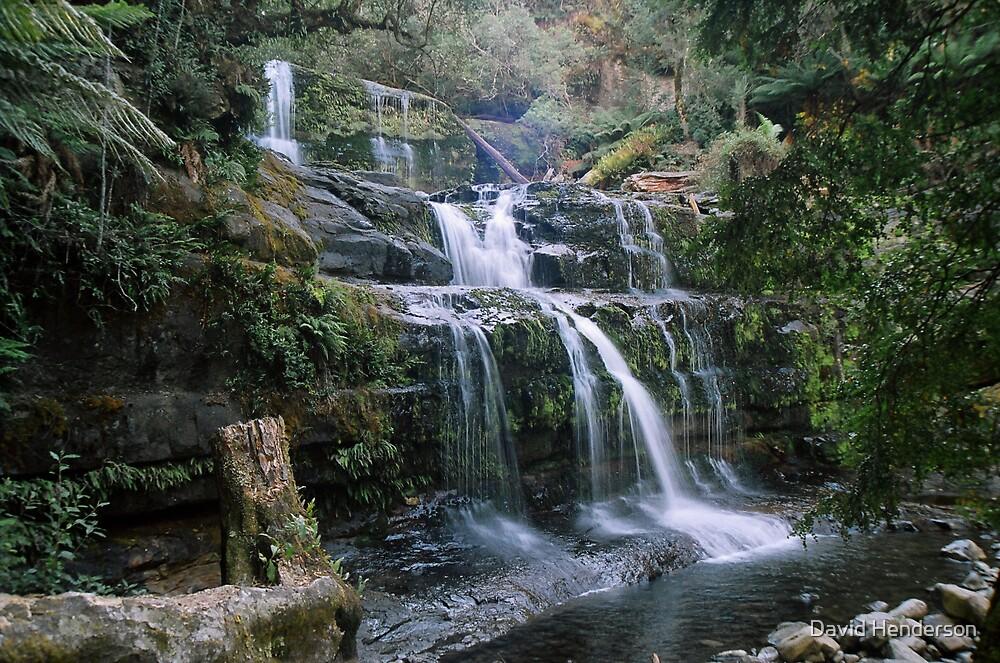 Liffey falls by David Henderson