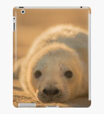 Grey Seal Pup iPad Case/Skin