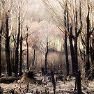 Four Seasons 1 by somewherestudio