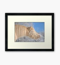 Happiness Is a Warm Sun Framed Print
