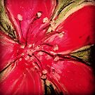 Red Hibiscus Detail  by Travelwithmyart