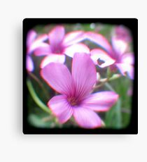 Garden of Weeds Canvas Print