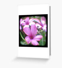 Garden of Weeds Greeting Card