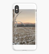 The Norwegian countryside at its best iPhone Case/Skin