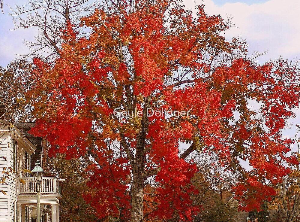 Firey Tree by Gayle Dolinger