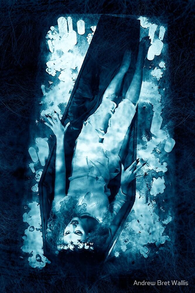 Eternal Sleep  by Andrew Bret Wallis