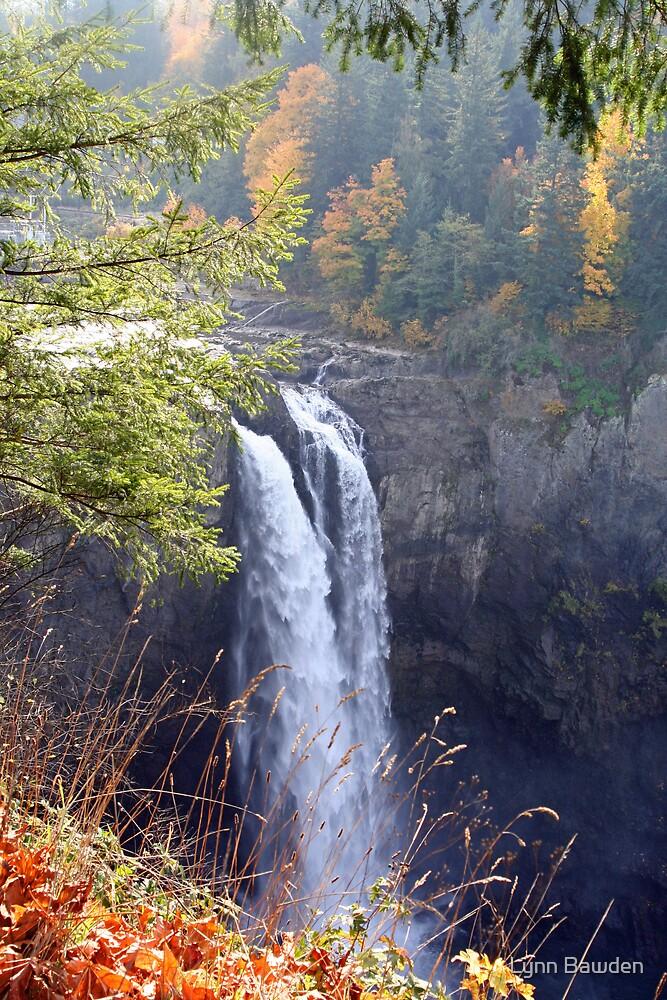 """""""Snoqualmie Falls"""" by Lynn Bawden"""