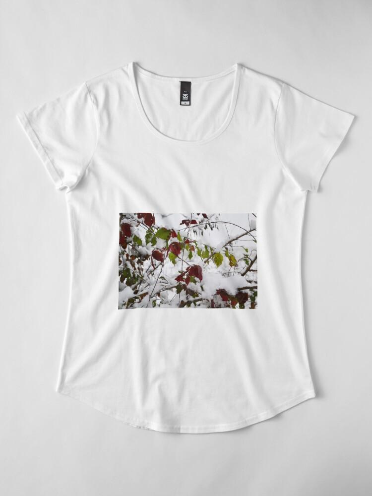 Alternate view of Winter Premium Scoop T-Shirt