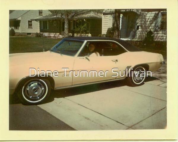 My First CAR! by Diane Trummer Sullivan