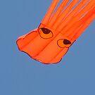orange + blue by Marina Hurley