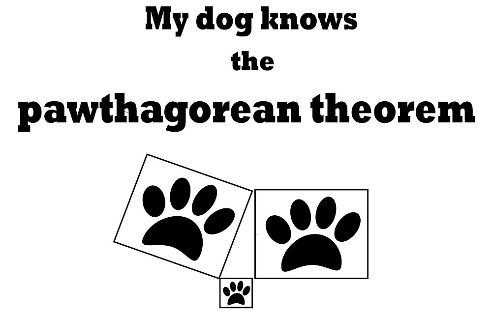 My Dog Knows the Pawthagorean Theorem by Chiwow-Media