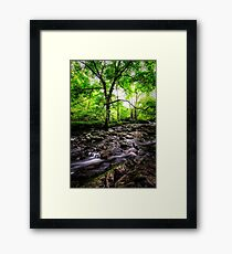 A Natural Glow Framed Print