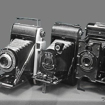 Vintage cameras photography design by TomConway