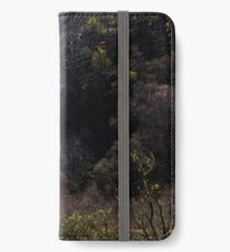 Silvery Falls iPhone Wallet/Case/Skin