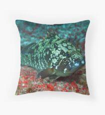 Posing Grouper Throw Pillow