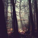 Autumn sunrise by Lenoirrr
