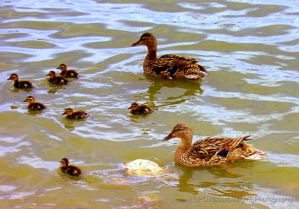 Mom Dad And Babies by R&PChristianDesign &Photography
