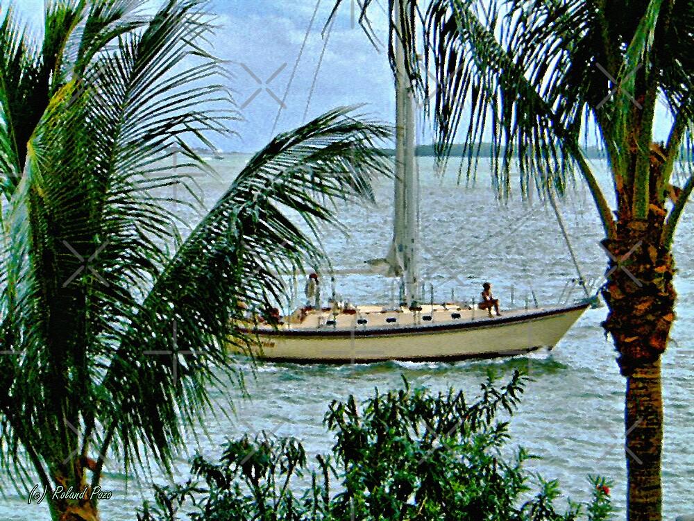 I'd rather be sailing by photorolandi