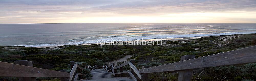 beach Steps by rosina lamberti