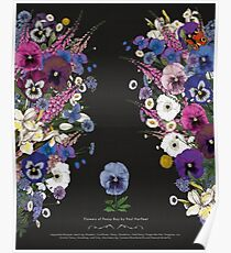 Flowers of Pansy Boy - Impossible Bouquet  Poster