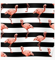 Pink Flamingo Pattern on Black and White Stripes Poster