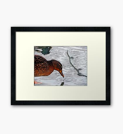 Having a Drink Framed Print
