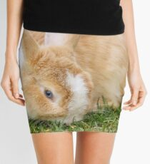 Beautiful blue eyed bunny on green grass Mini Skirt