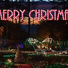Shore Acres Holiday Lights Whale - Merry Christmas by MyDigitalOregon