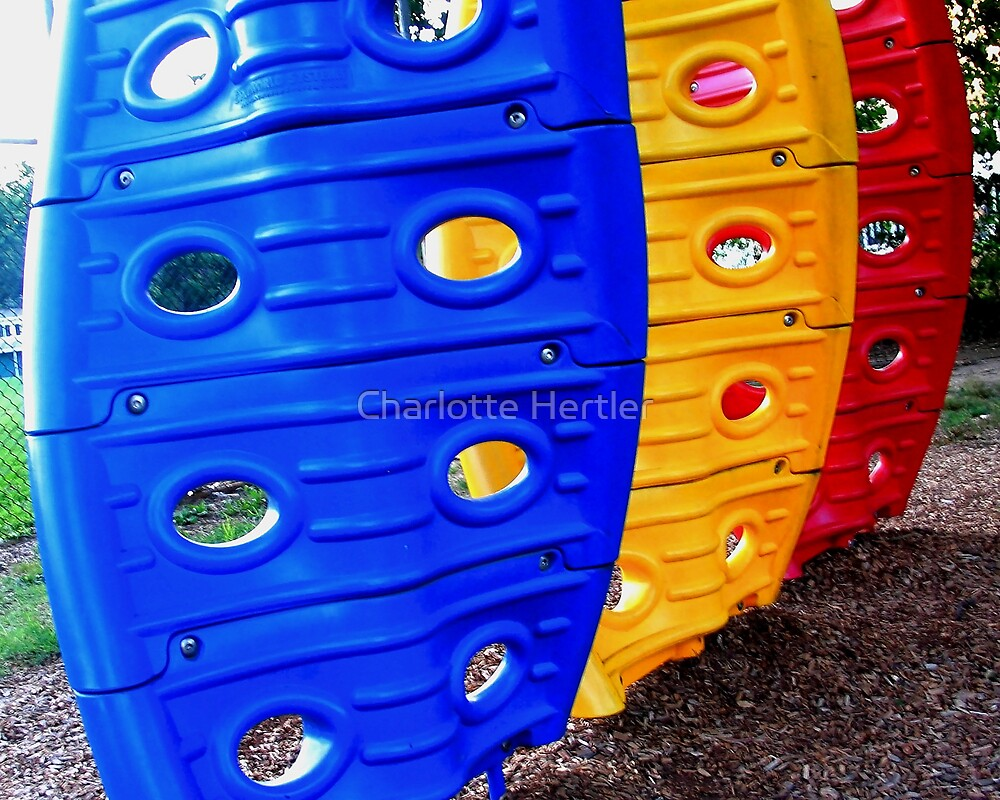 Fun Through A Child's Eyes 6 by Charlotte Hertler