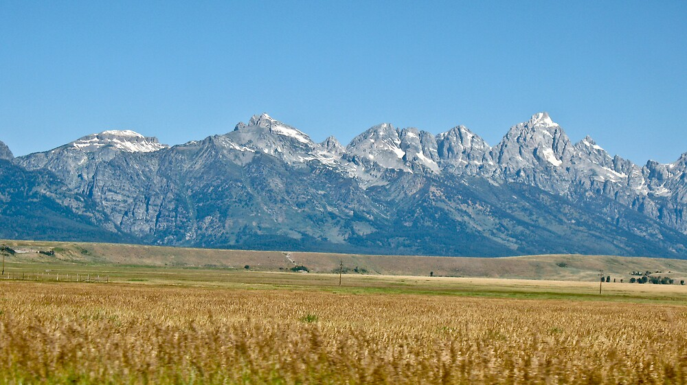The Tetons by Andrei Rusu