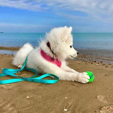 MONA'S BEACH by lperlia