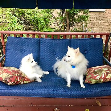 MONA AND FRIEND CODY by lperlia