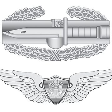 Combat Action Badge and Aviator by jcmeyer