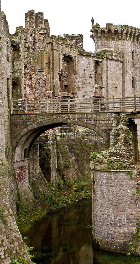 Raglan Castle - The Gatehouse & Bridge over Moat by Nala