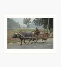 Rural China Art Print